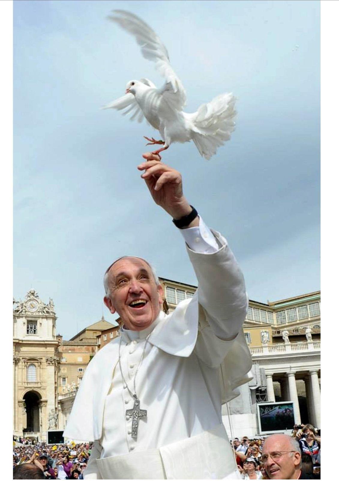 Le pape François annonce l'encyclique sur la foi