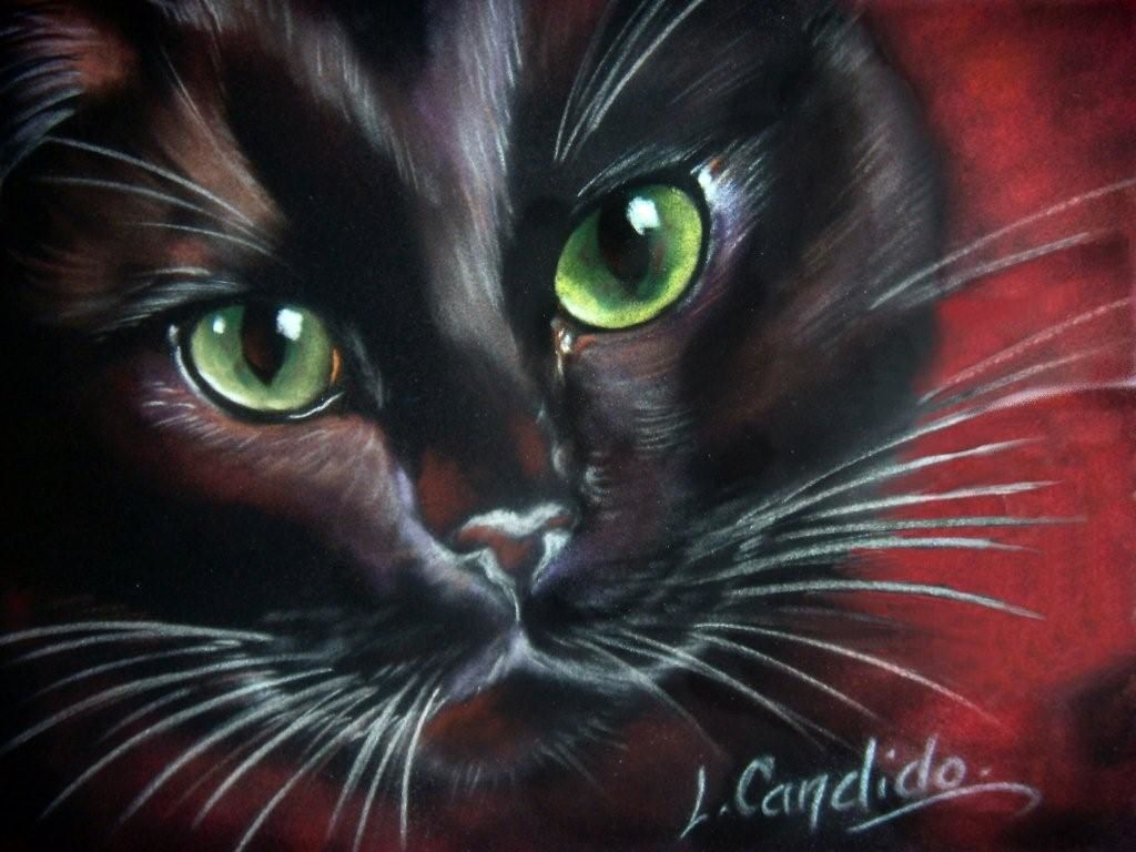 Bien Peintre Animalier Chat #12: Laurence Candido, Peintre Animalier, ...