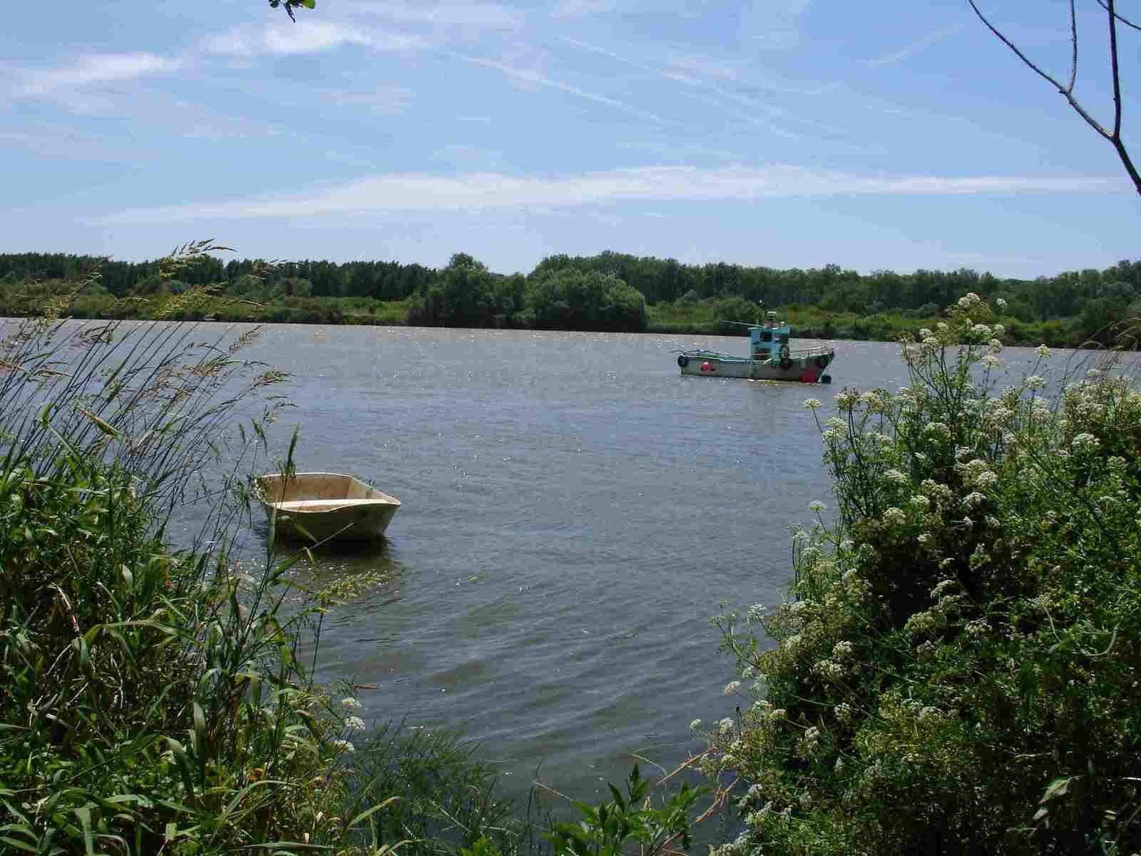 La Loire à Basse-Indre dans l'estuaire