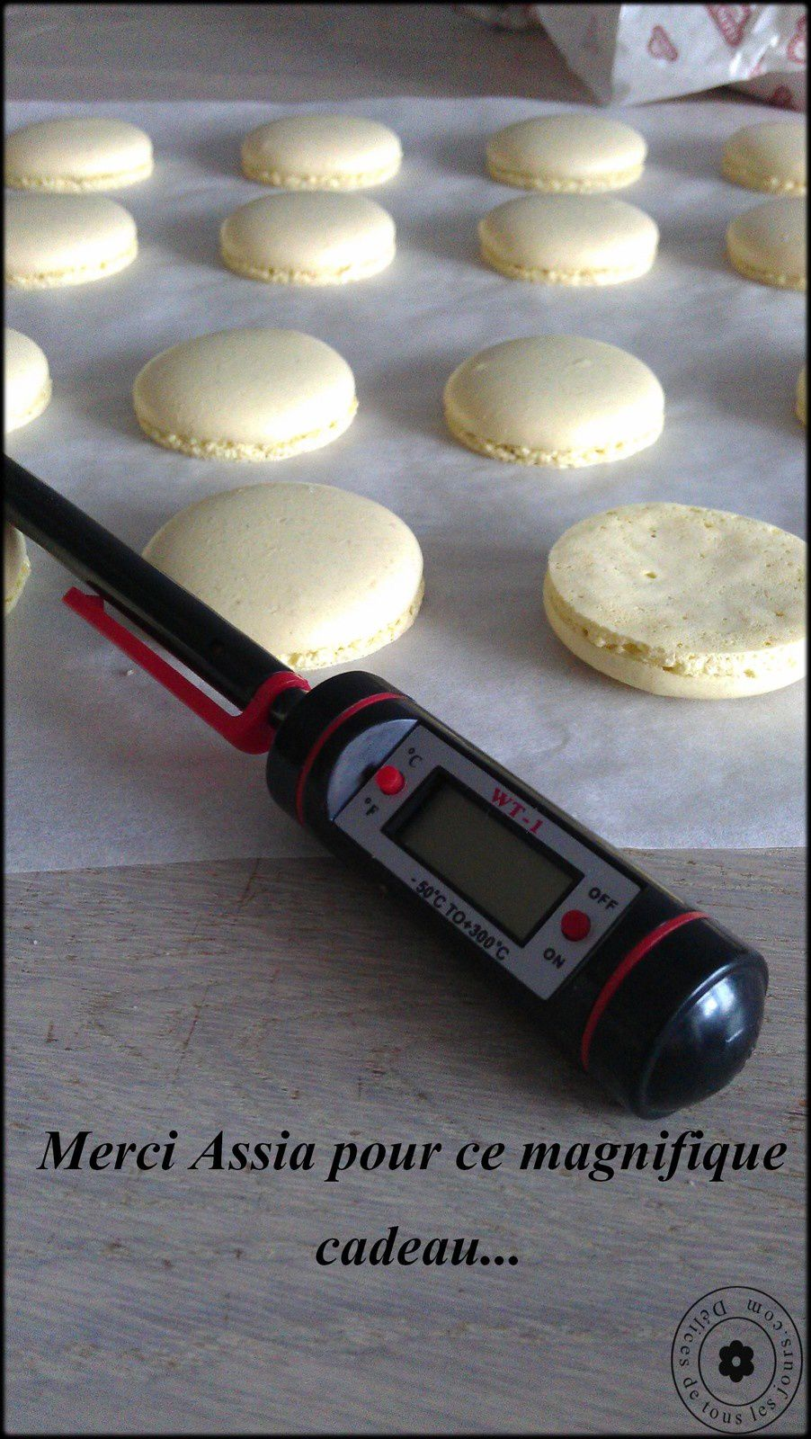 Macarons (attention roman en vue)