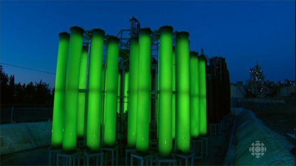 Les algues, l'énergie du futur (Doc) [VF]