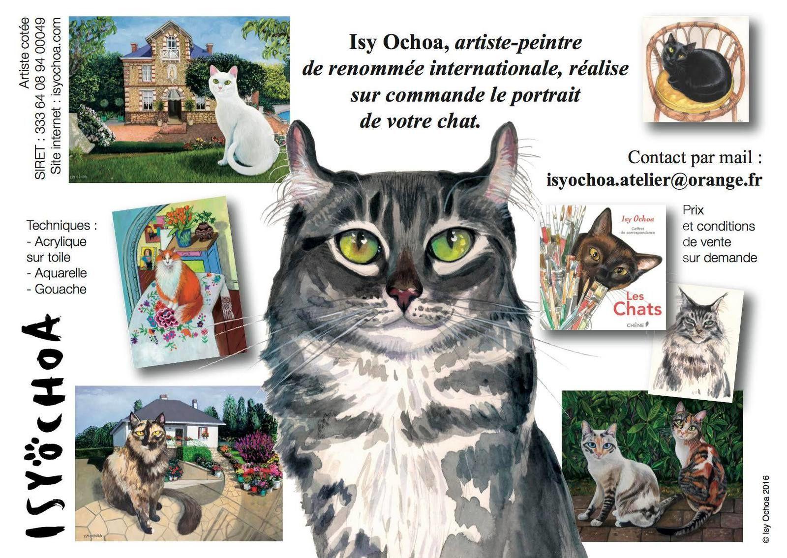 Isy Ochoa, portraits de chats
