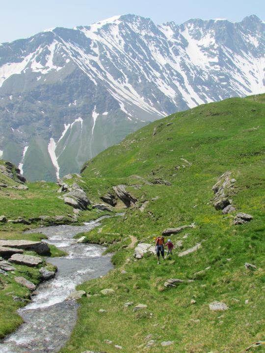 Les alpages sont richement fleuris, on se croirait encore au printemps.
