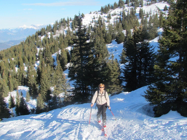 Dans la forêt au-dessus des pistes de ski de fond