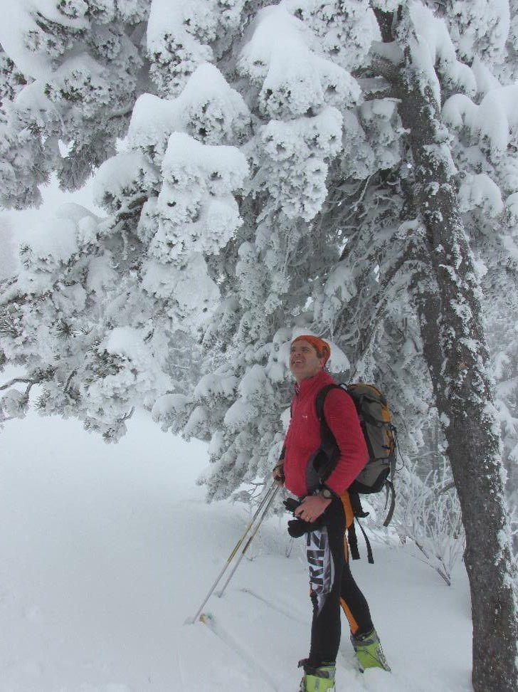 Des arbres gavés de neige un peu partout