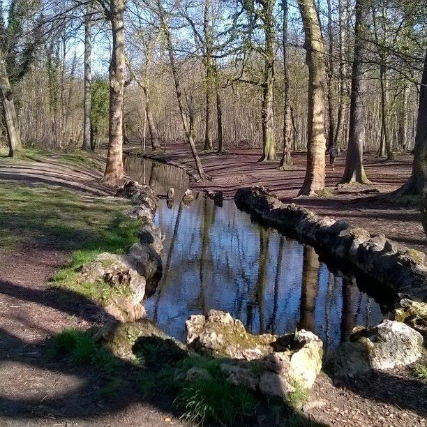 Un beau Bois de Vincennes ensoleillé ce 5 avril...