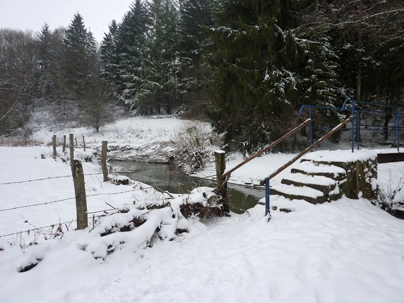 Ardenne hiver