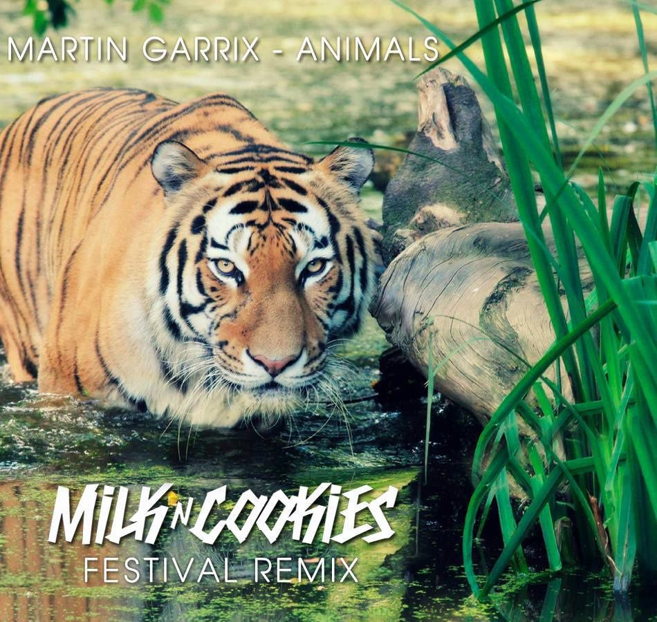 Remix : Martin Garrix - Animals (Milk N Cookies Festival Remix)