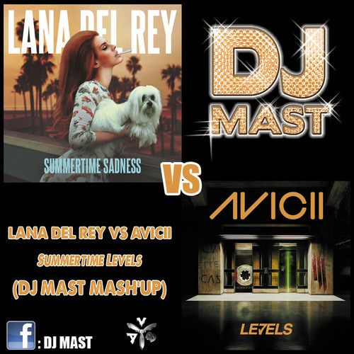 Preview : Lana Del Rey &amp&#x3B; Lady Gaga vs Avicii - Summertime Levels (DJ Mast Mash'up)