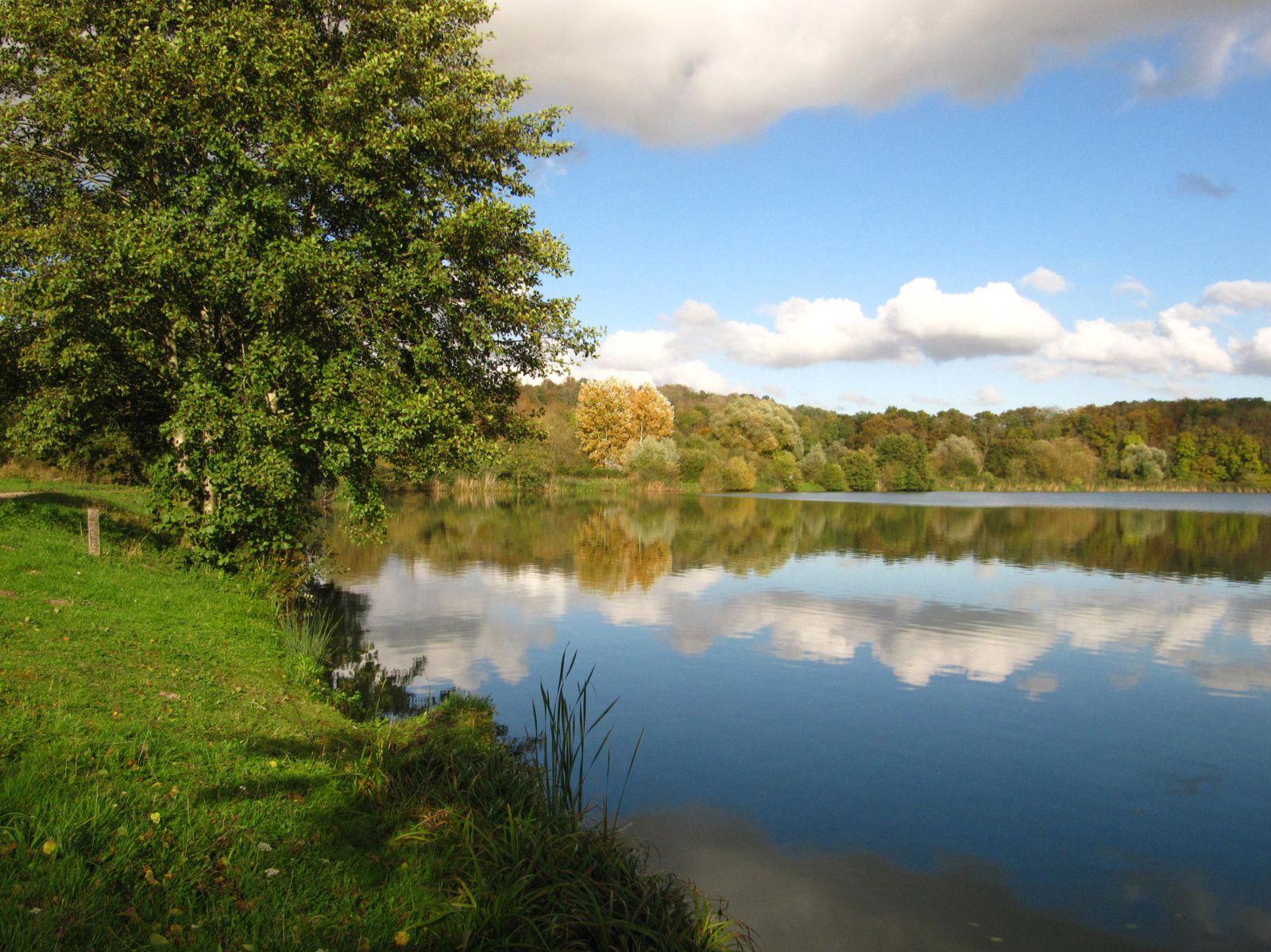 Ciel d'automne sur l'étang