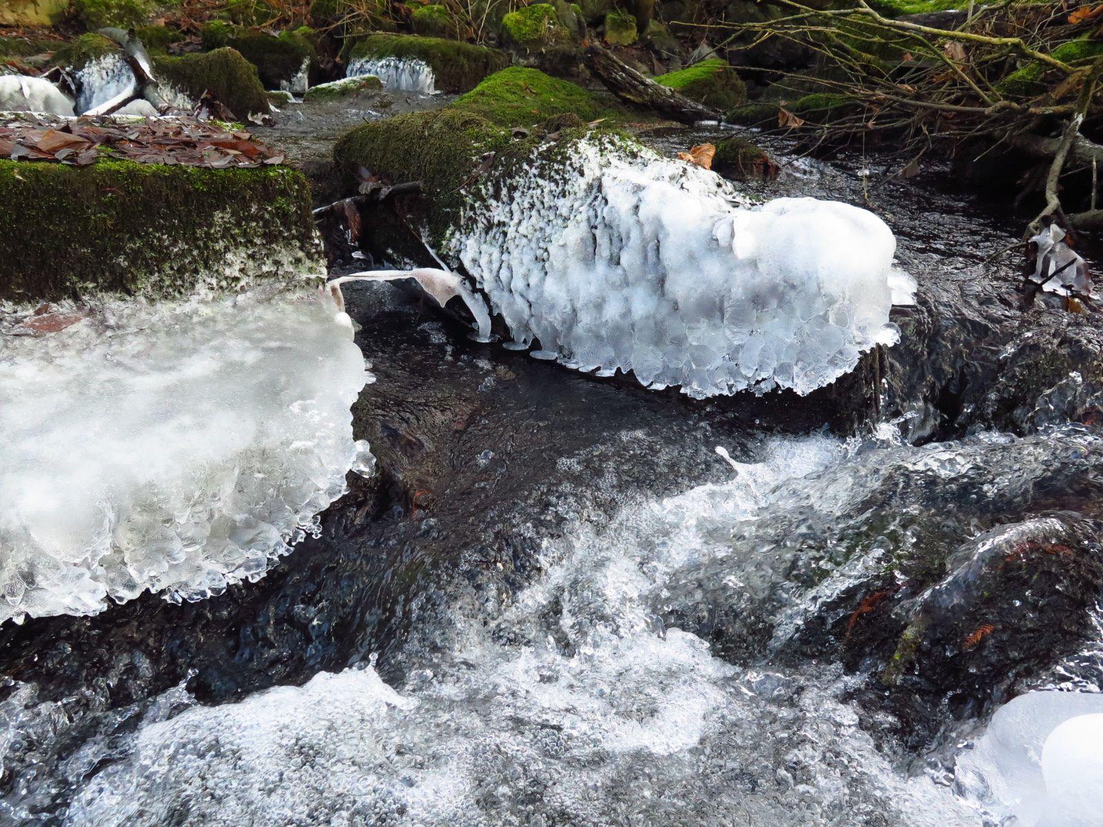 Glace, eaux vives et rochers moussus