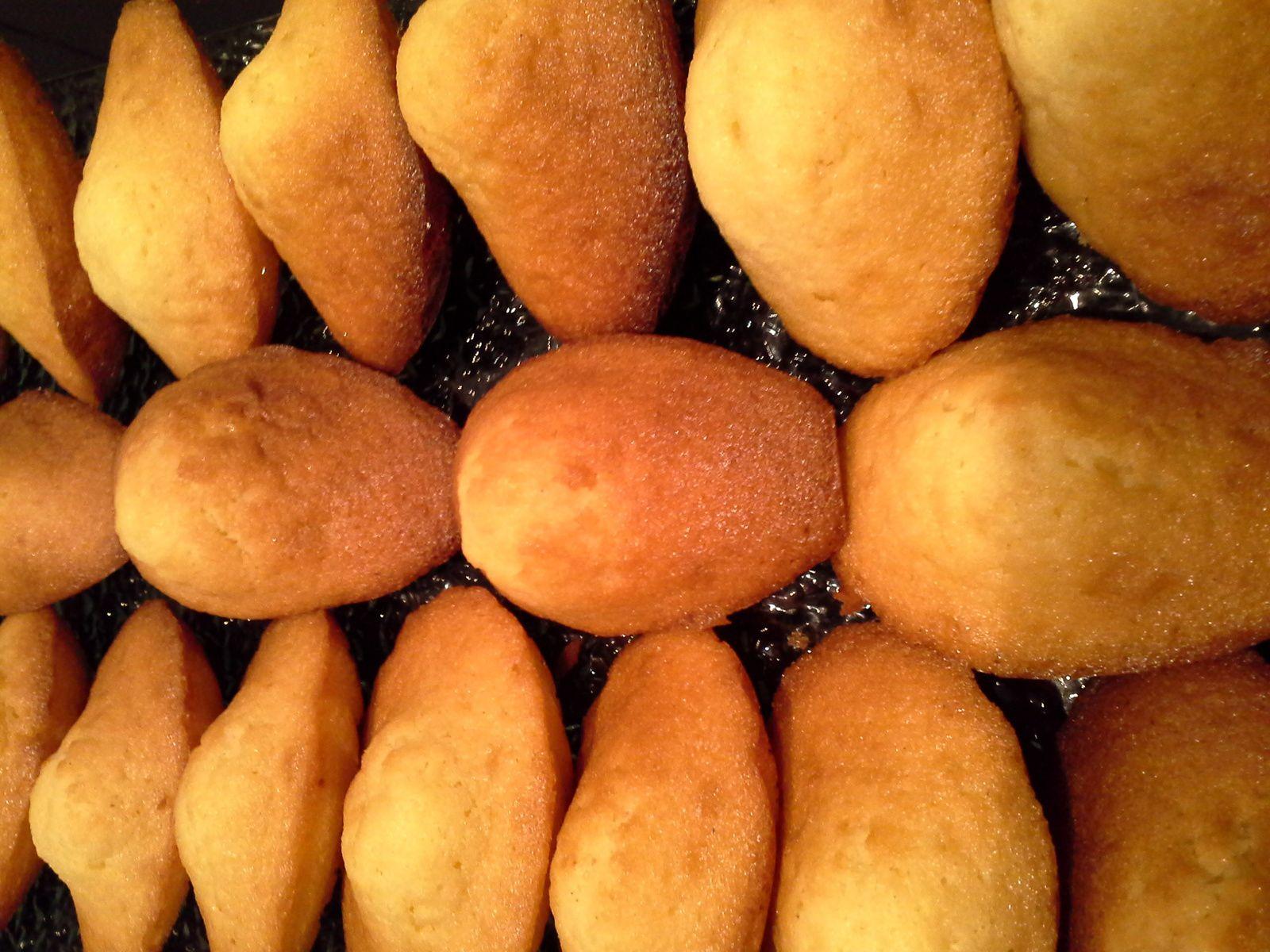 madeleines (très simple)