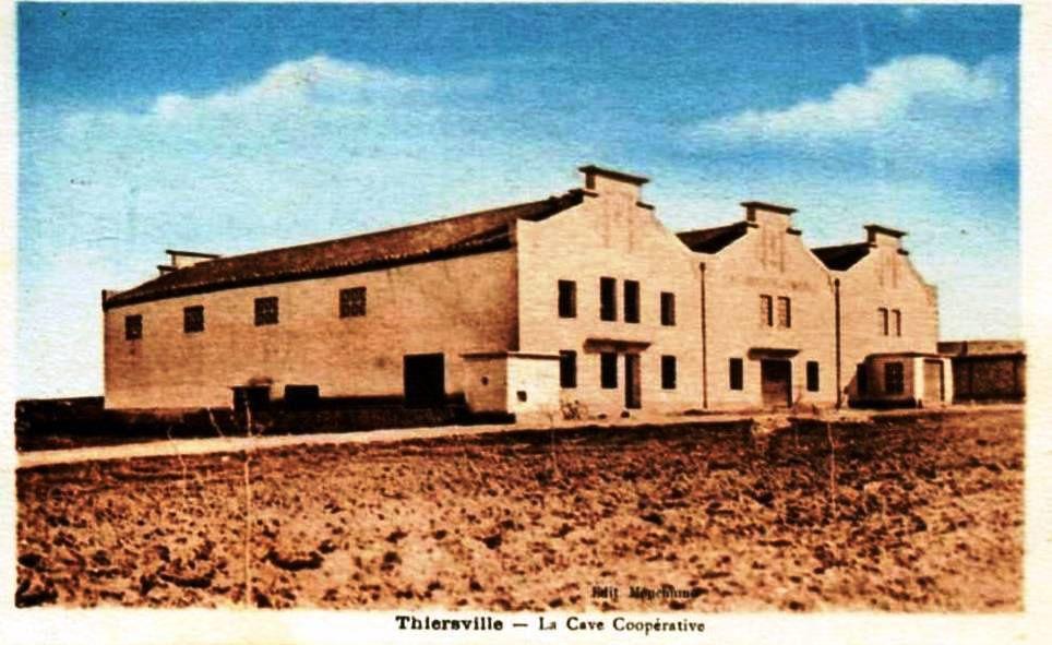 Cave coopérative de Thiersville (Ghriss) créée en 1929.