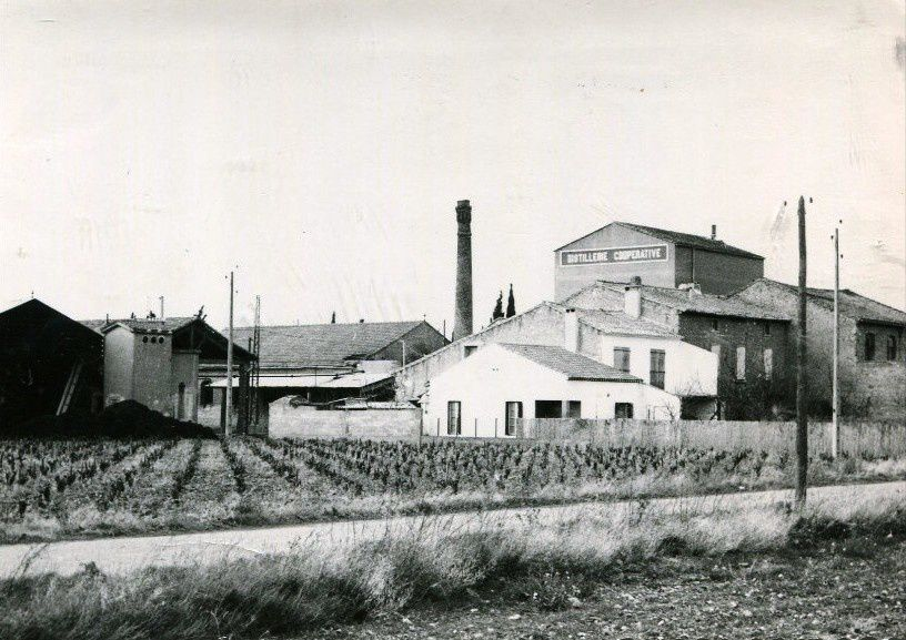 Distillerie d'Ornaisons (Aude)