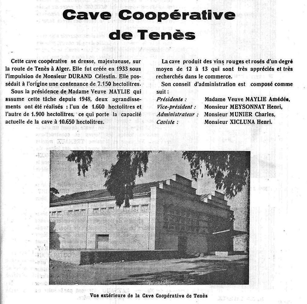 Cave coopérative de Ténès.