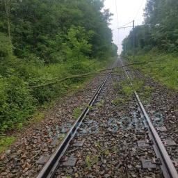 Incident Tram-Train - Mardi 6 Juin 2017