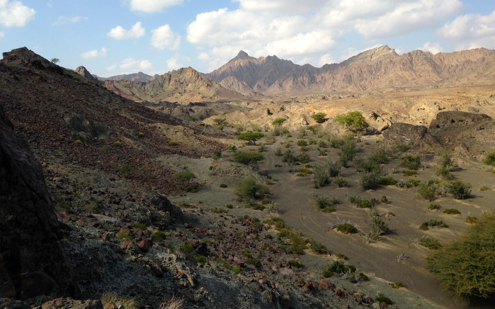 Oman field trip: Part 3
