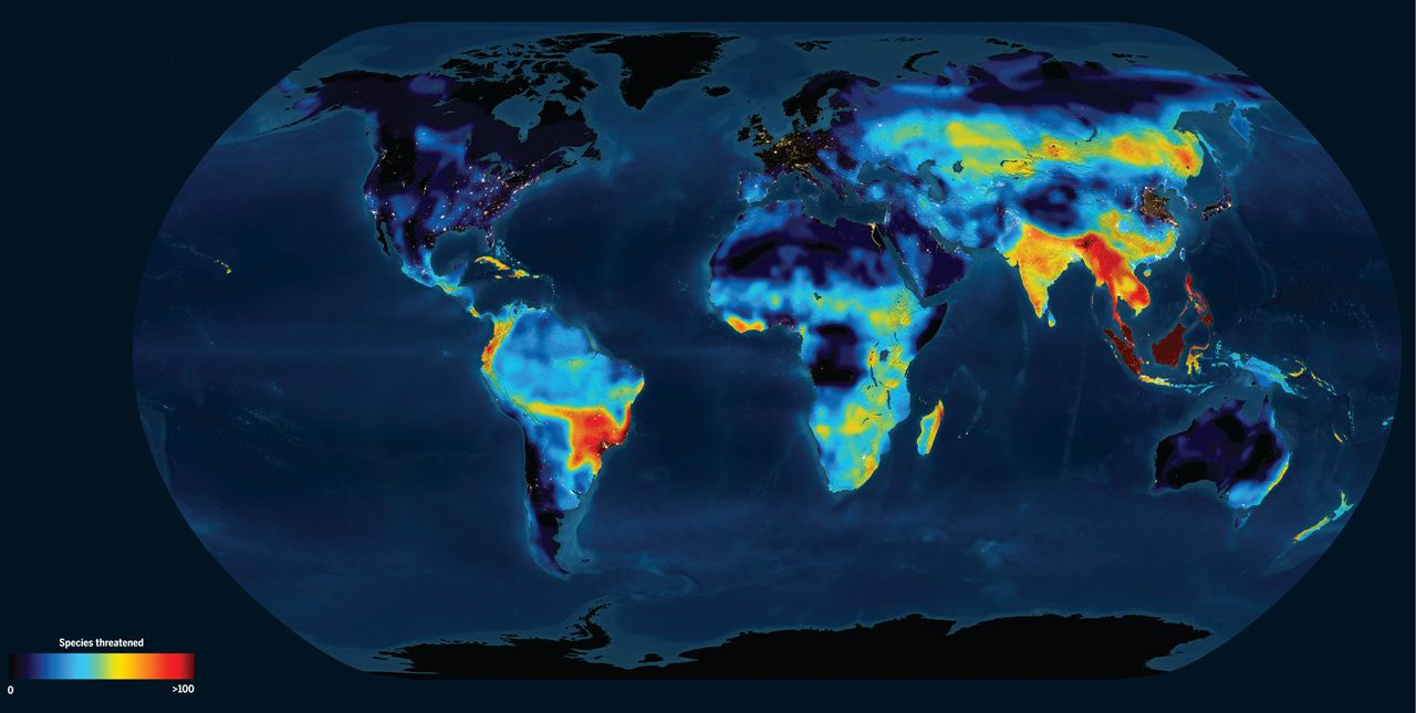 Twilight for animals. Large numbers of animal species face extinction in Southeast Asia, the Amazon, and the Andes, as shown in this map of mammals, amphibians, and birds. Animals also face high rates of extinction in Europe and North America, where fewer species are found overall.