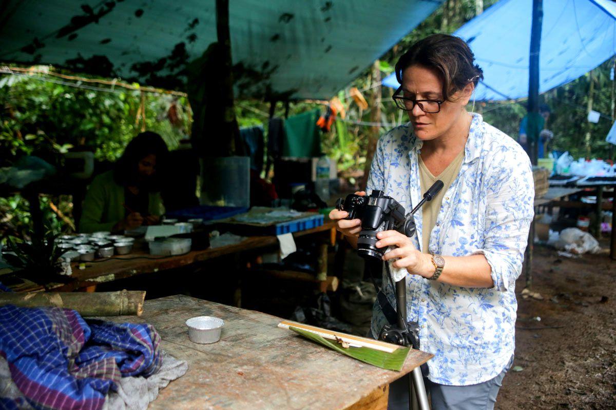 Heidy Schimann, mycologue à l'INRA, photographie l'un des nombreux champignons collectés le jour même (photo de Yann Chavance)