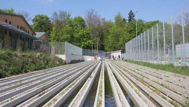 The stream mesocosm facility at the Campus Landau (photo by M. Wieczorek)