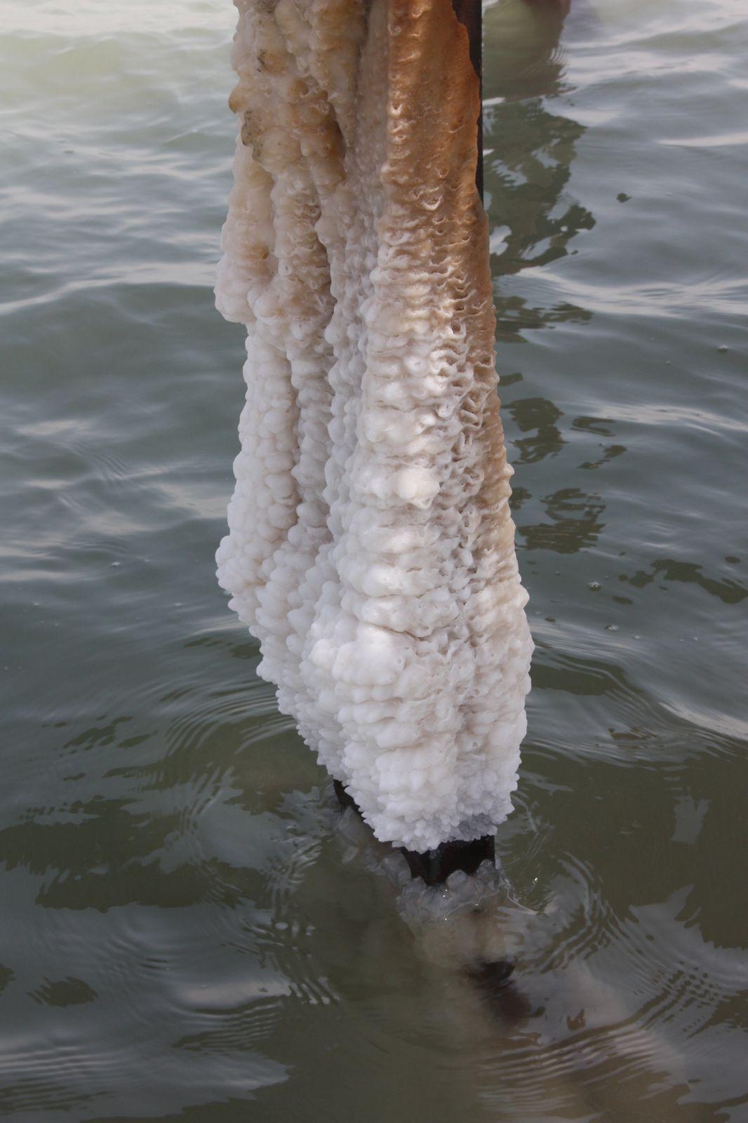 Bains de boue à la mer morte