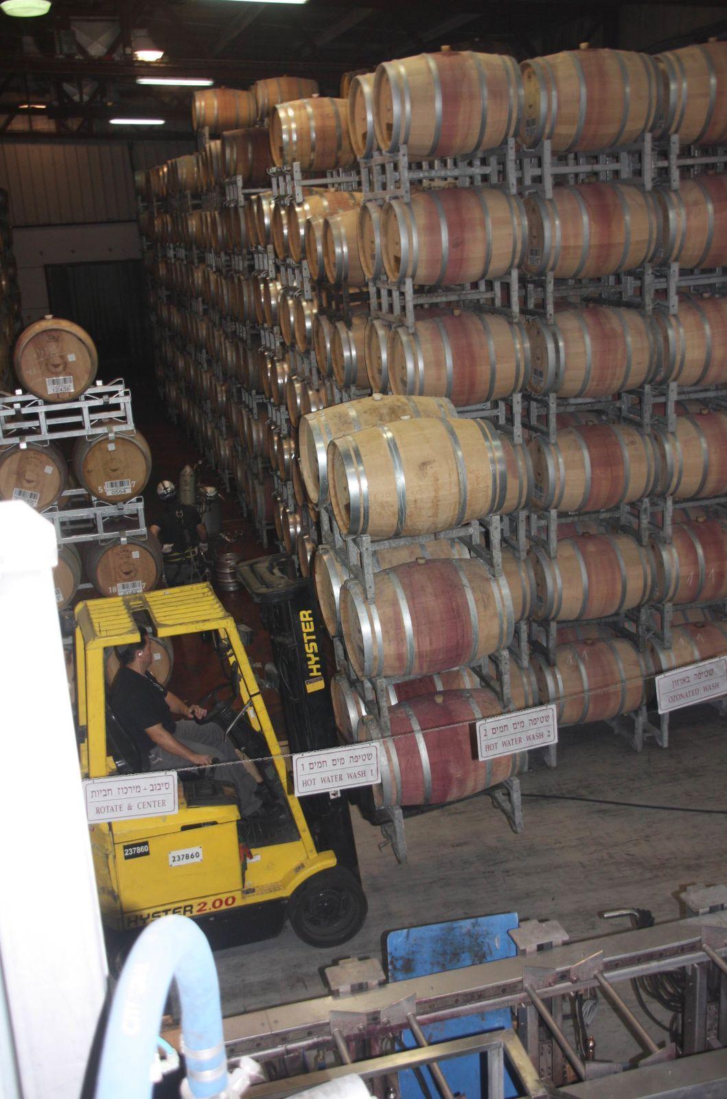 Les vins du Golan