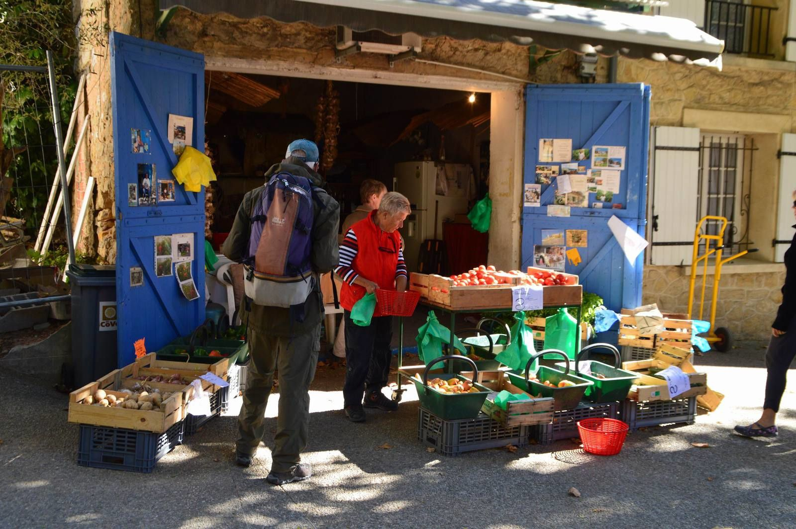 Voyage dans les Alpilles (17): Le Mont  Ventoux