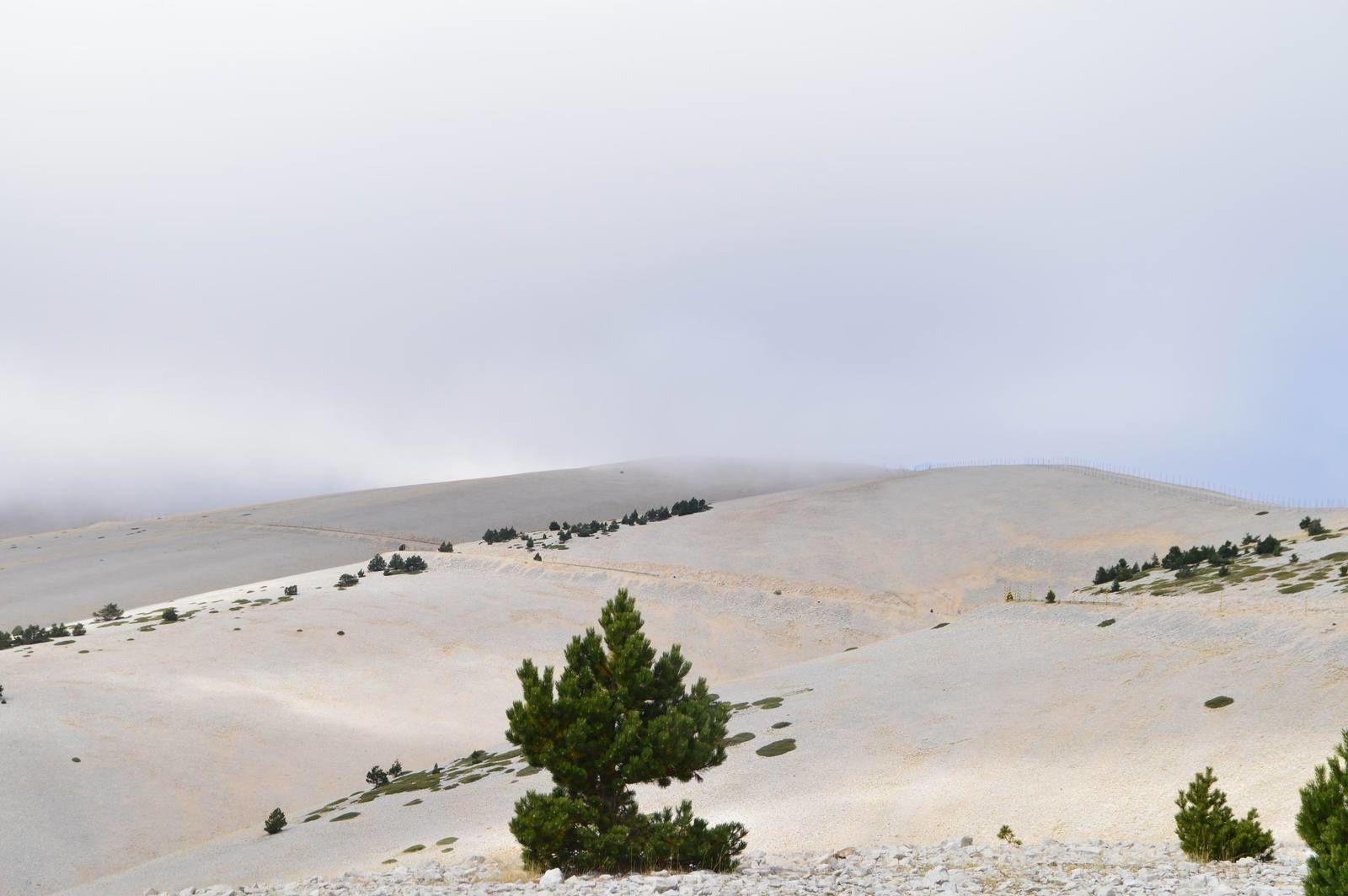 Voyage dans les Alpilles (18): Le Mont Ventoux