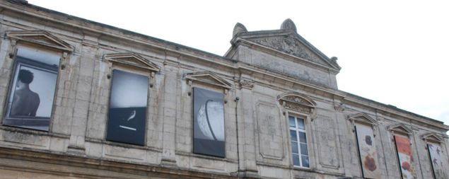 Les Phlox mis en avant au musée de la Roche/Yon