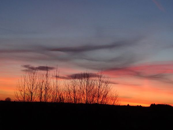 Ce matin, à l'aube...