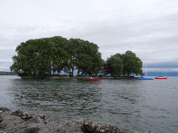 Lac Léman à Rolle