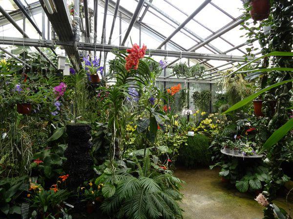 Orchidarium de Prangins