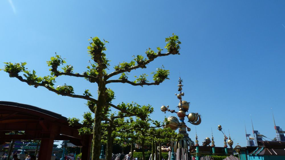 Les actions et les engagements environnementaux de Disneyland Paris