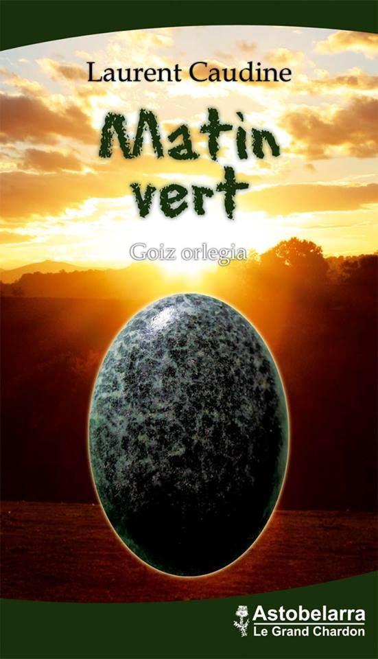 &quot&#x3B;Matin vert&quot&#x3B;, le premier roman de Laurent Caudine.