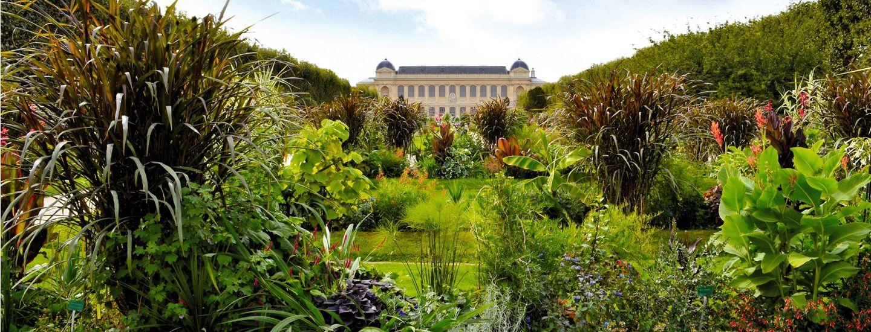 Paris. Le jardin des plantes. Photo Jérôme Munier.