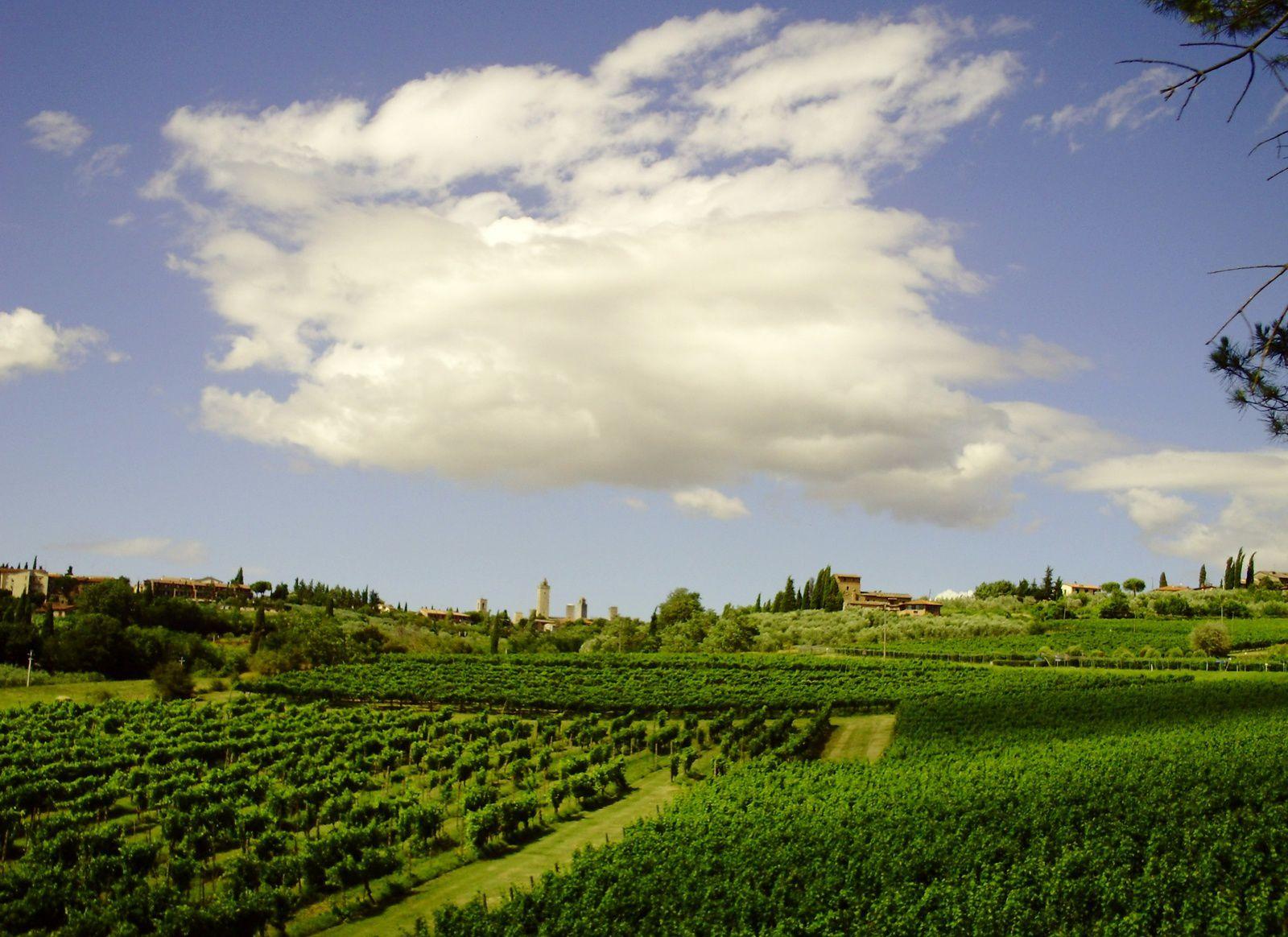 San Gimignano au fond super ..et la route qui va vers Volterra un régal