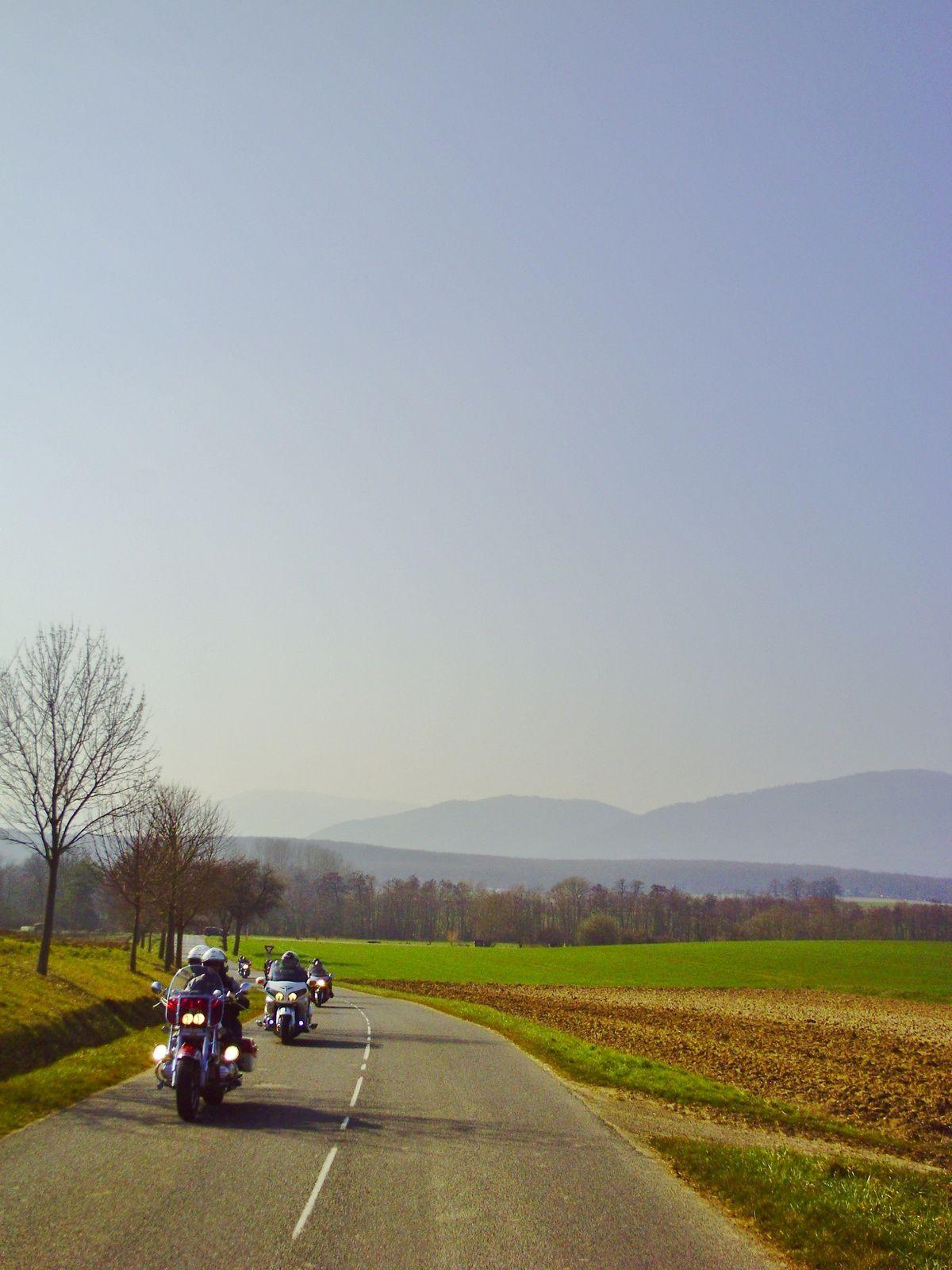 Les Vosges au fond