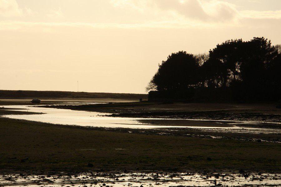 Fin de journée au bord de dunes