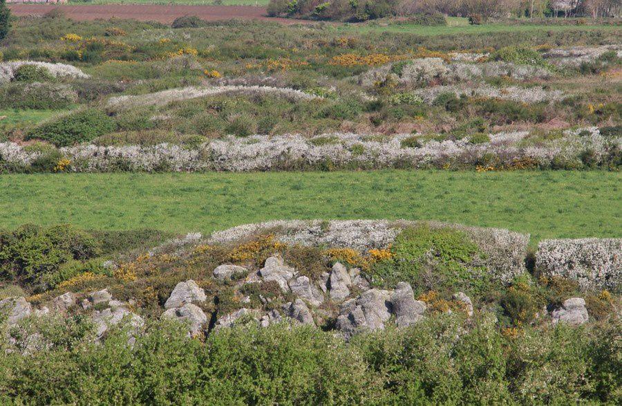 La route du vent solaire en Finistère