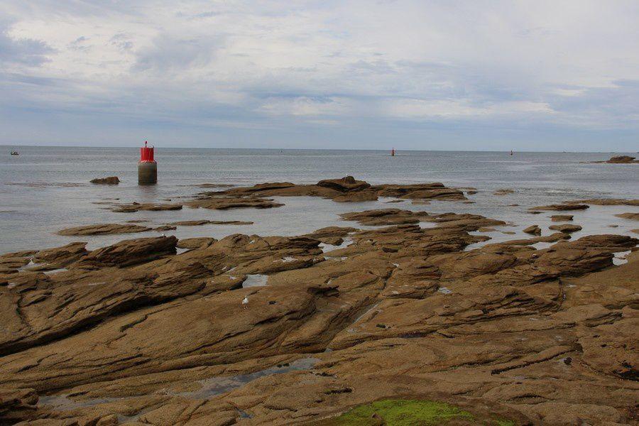 Dans les rochers à marée descendante