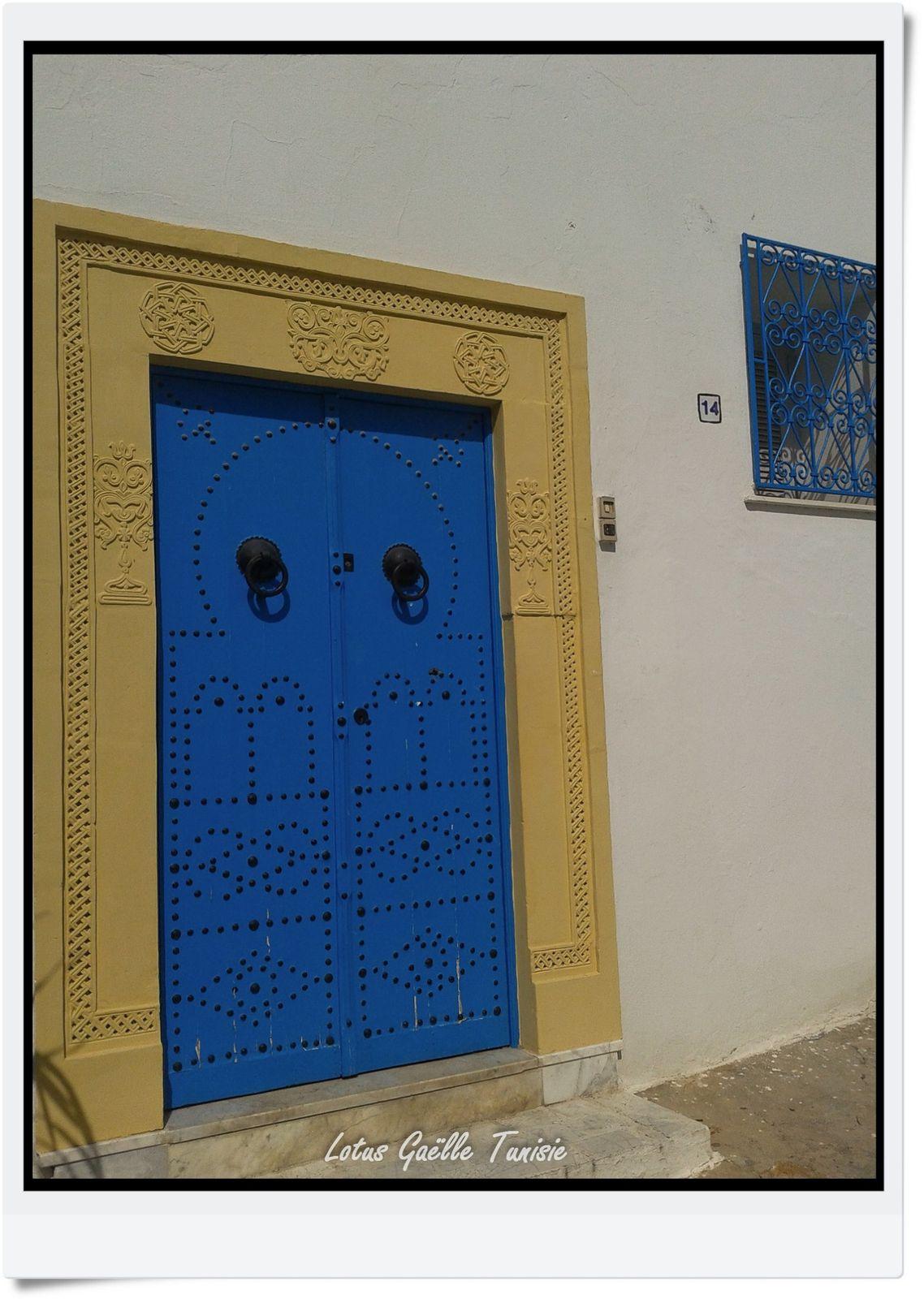 Porte bleu de Sidi Bou Saïd