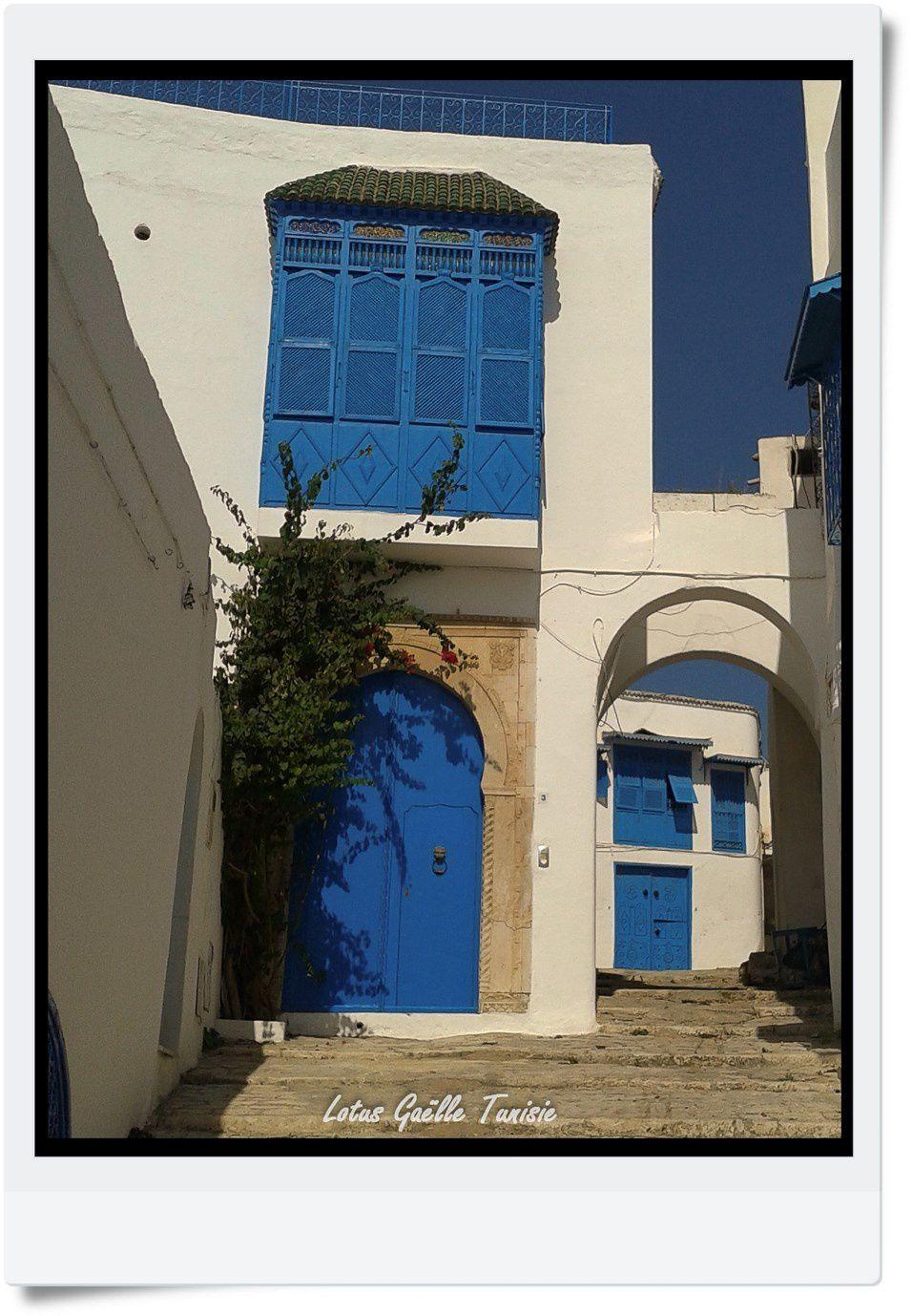 Portes et volets bleu, petite ruelle de Sidi Bou Saïd