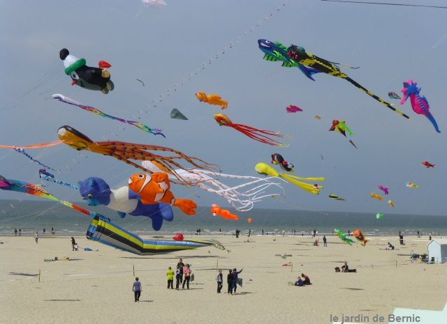 Une journée dans le vent