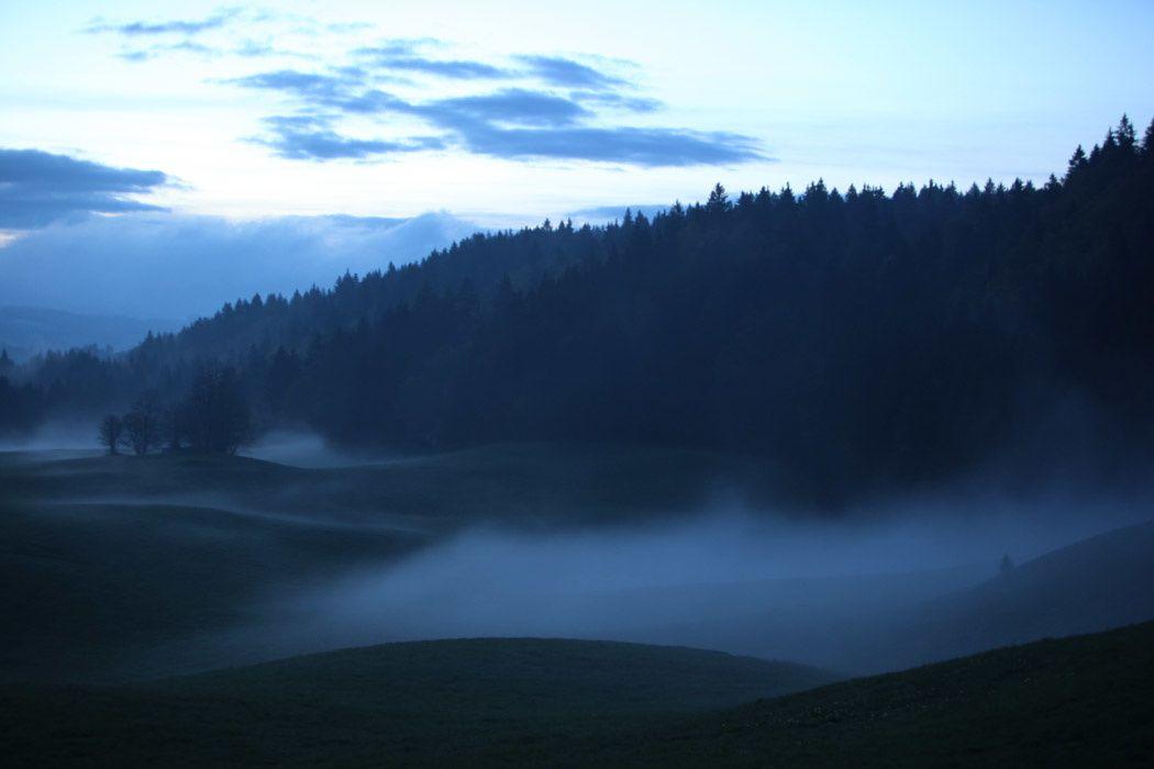 Brouillard dans le Haut-Jura