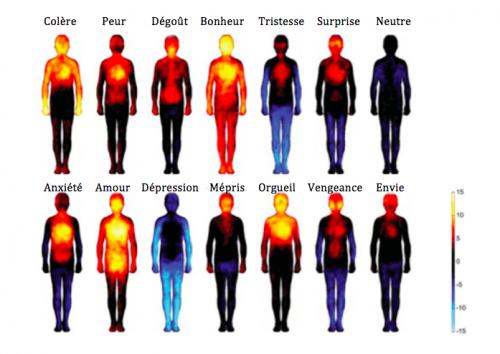 Les effets des émotions et des pensées négatives sur notre corps
