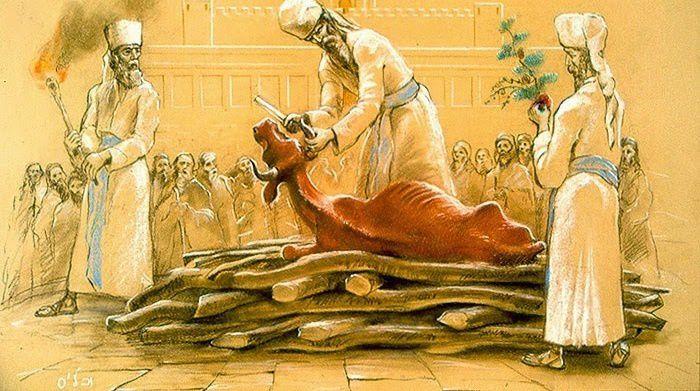 Prophétie sur le 3e Temple : Lancement « officiel » du recrutement des futurs prêtres.