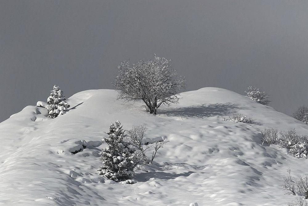 avec la neige, ça change tout... (suite)