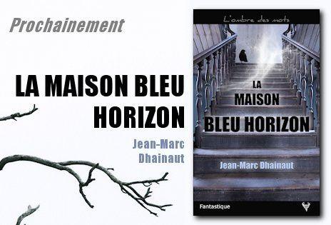 Maison bleu horizon Jean-Marc Dhainaut