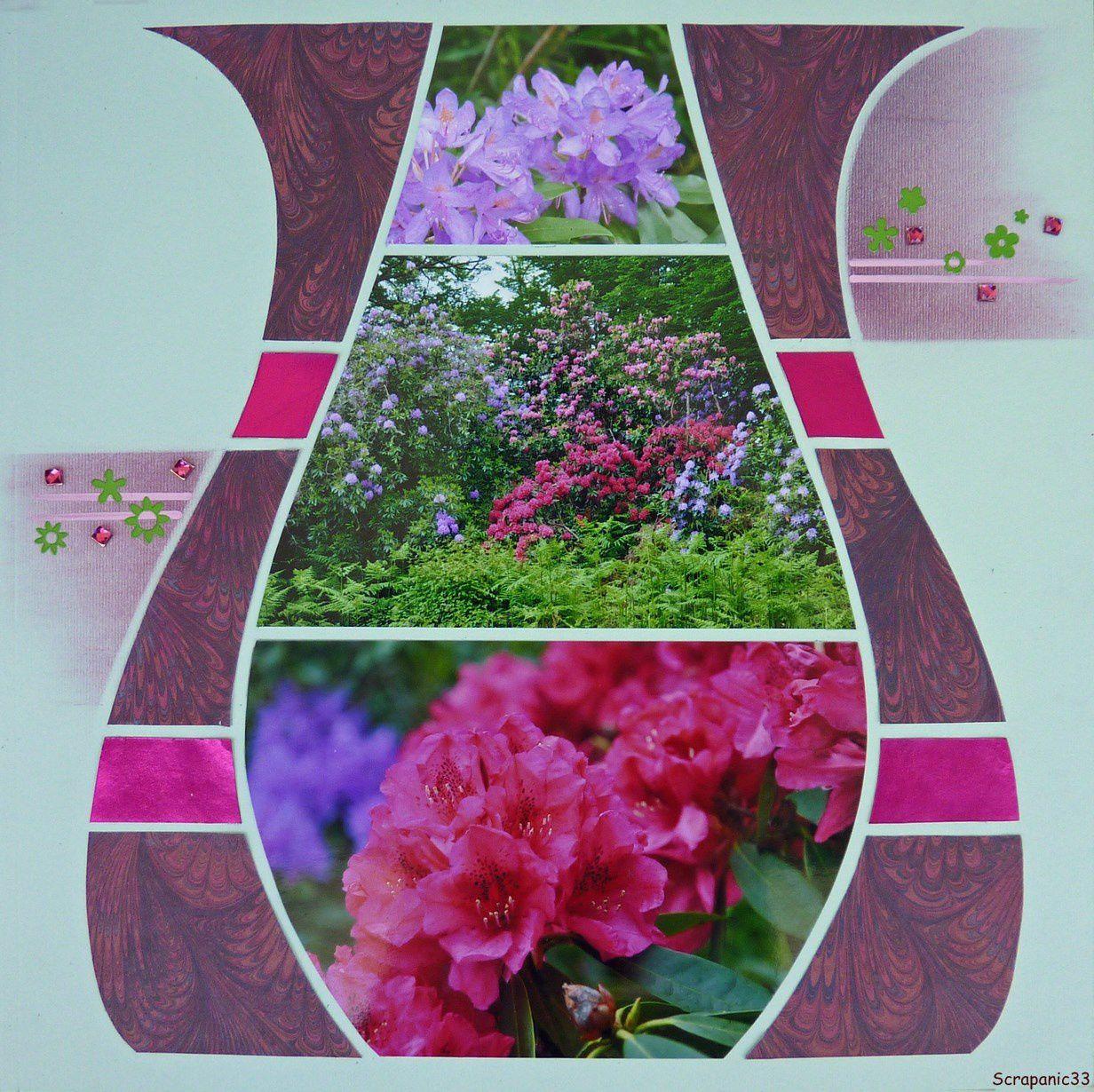 Rhododendrons du parc de Grenade