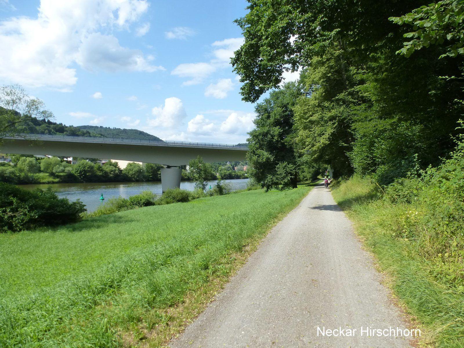 Vallée du Rhin et du Neckar à vélo